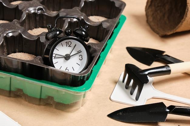 Despertador e tabletes de turfa especiais para plantar sementes, conceito de jardinagem, plantio de primavera, pás, pratos e solo para plantas