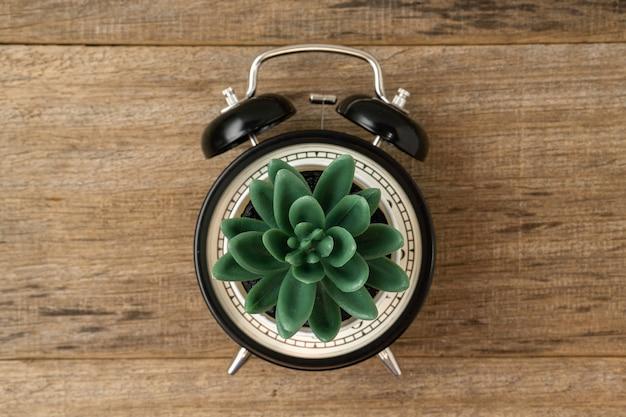 Despertador vintage conceito criativo preto e planta artificial em uma placa de madeira.