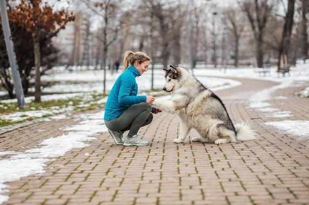 Desportista em um passeio com seu cachorro em um parque no clima frio. neve, dia de neve, clima frio, animais de estimação