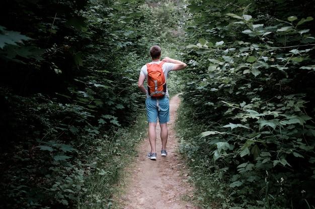 Desportivo atraente jovem caminhando por um caminho na floresta