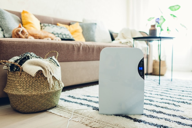 Desumidificador com painel de toque, indicador de umidade, lâmpada uv, ionizador de ar, recipiente de água funciona em casa. secador de ar
