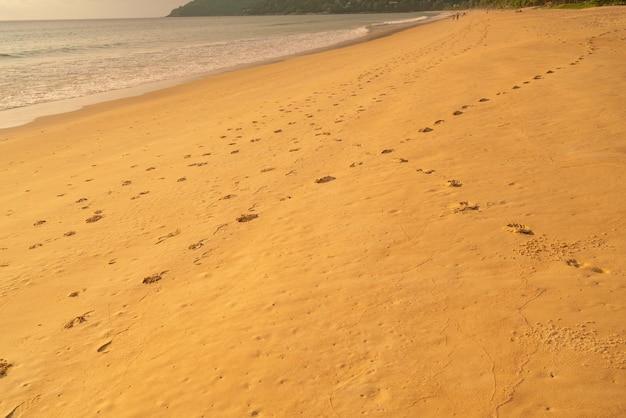 Detalhe a textura da areia praia do sol do mar para relaxar nas férias fundo de verão ensolarado com impressão do pé na bela praia de areia em phuket tailândia.