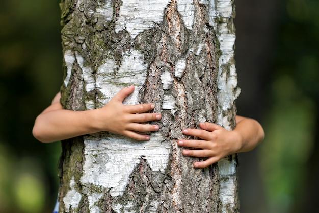 Detalhe close-up, de, isolado, crescendo, grande, tronco árvore forte, abraçado