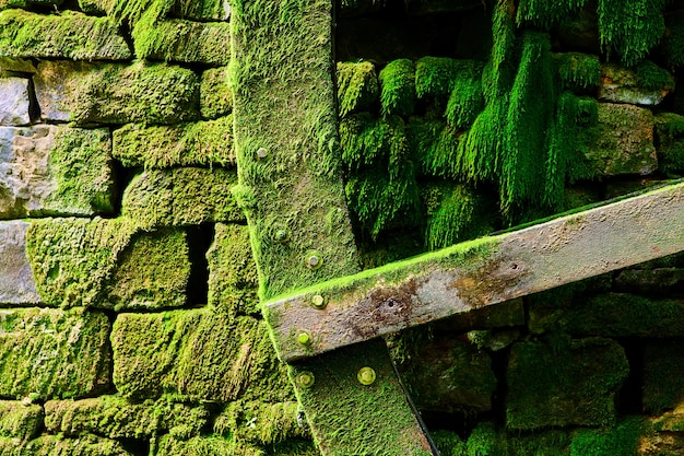 Detalhe da lâmina na roda d'água para moinho de água com pedras e coberta de musgo verde