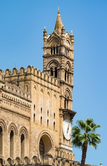 Detalhe, de, catedral, de, palermo, sicília