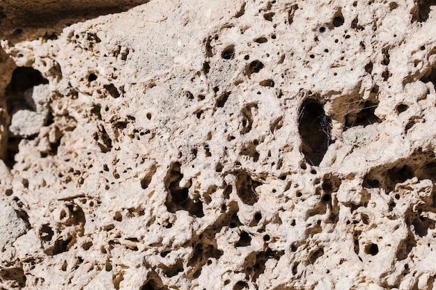 Detalhe, de, pedra branca, com, buracos