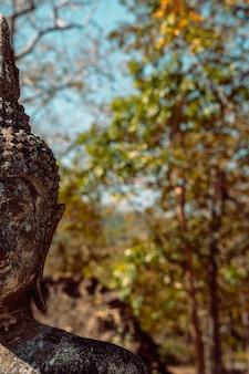 Detalhe de retrato antigo da escultura de buddha com espaço verde da cópia da natureza.