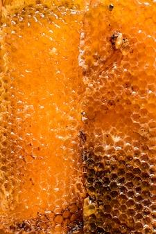 Detalhe do favo de mel