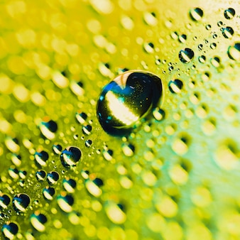 Detalhe macro da gota de água do orvalho no fundo amarelo do bokeh de brilho