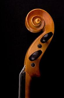 Detalhes da cabeça do violino