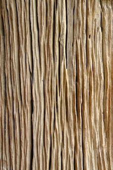 Detalhes de madeira decorados
