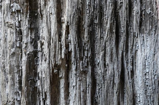 Detalhes de madeira padrão decorados