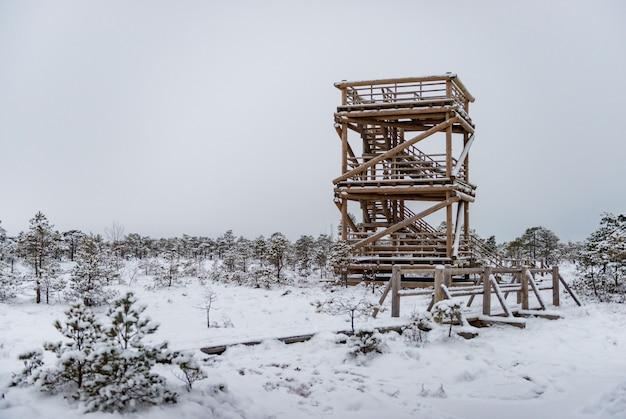 Dia de inverno nevado no pântano. pequenas árvores do pântano e torre de vigia.