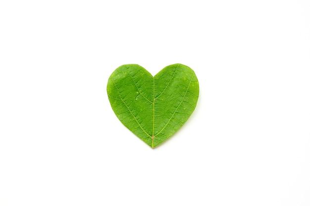 Dia de são valentim. o coração é cortado da folhagem em fundo branco