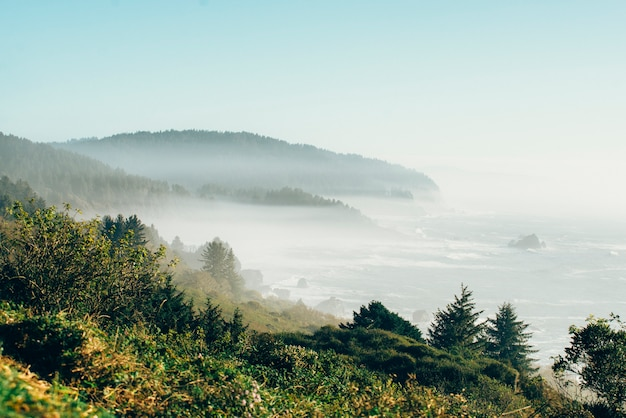 Dia de sol com nevoeiro no oceano na califórnia