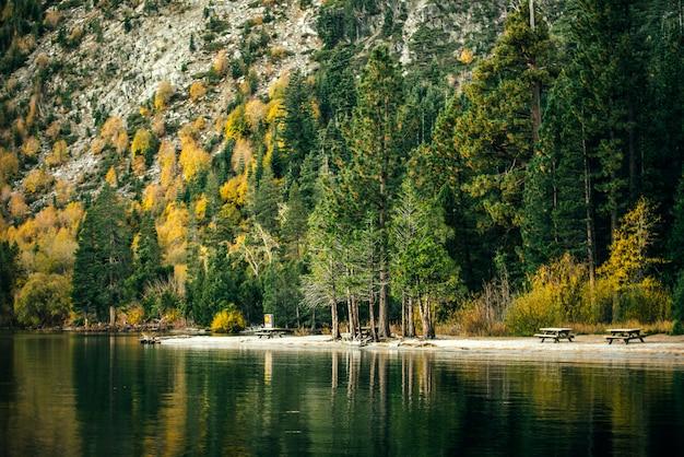 Dia de sol na floresta do lago tahoe e montanhas