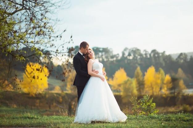 Dia do casamento. noiva e noivo. recém-casados e amor. imagem em tom amarelo. casamento solar no campo com girassóis. casal feliz recém-casado no dia do casamento. casal feliz. carinhas felizes.