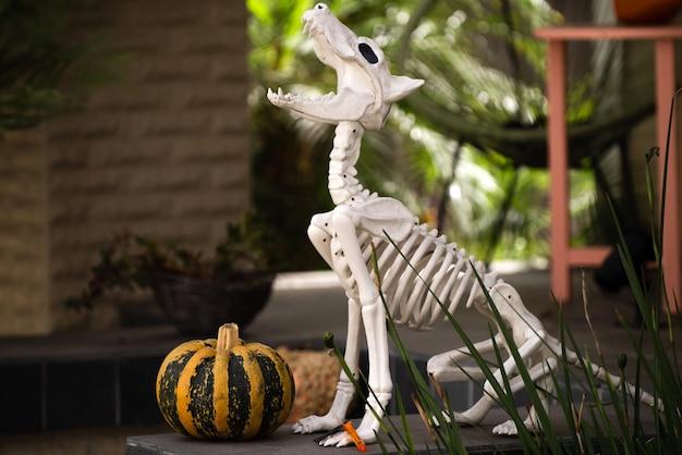 Dia dos mortos, halloween ou dia. fundo de halloween. esqueleto de halloween de um cachorro assustador.