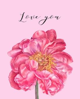 Dia dos namorados! vos amo. mão desenhada peônia rosa aquarela em rosa