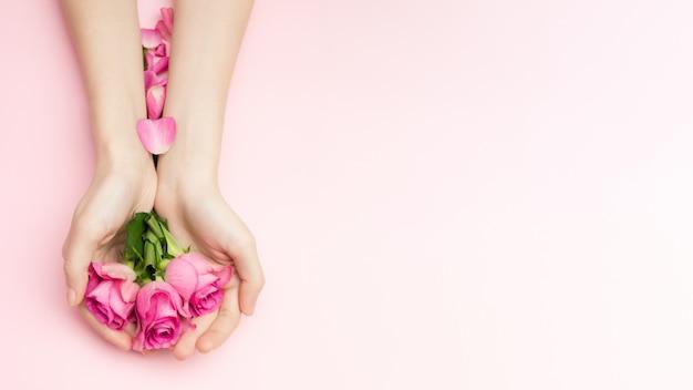 Dia internacional da mulher e feliz dia dos namorados, conceito de dia das mães. as mãos de mulher segurar flores rosas em um fundo rosa. um pulso fino e manicure natural.