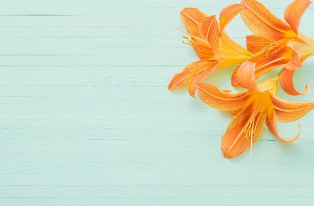Dia-lírio laranja em madeira