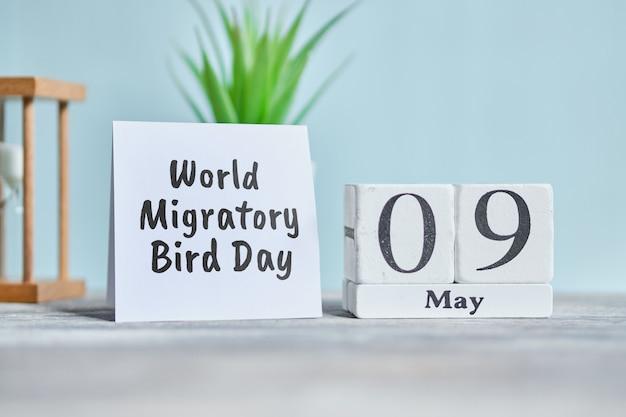 Dia mundial das aves migratórias no feriado - 9 de maio conceito de calendário do mês de maio em blocos de madeira.