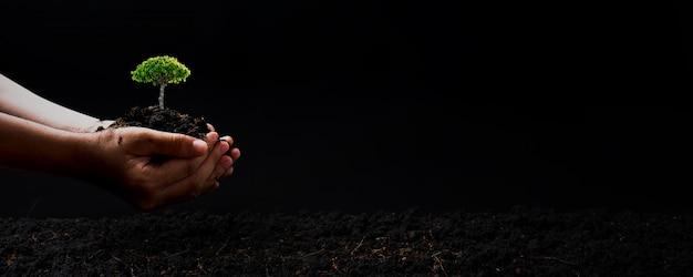 Dia mundial do meio ambiente e salvar o conceito de meio ambiente, fechar a mão segurando o solo com planta de mudas ou pequena árvore com chão escuro, salvar e proteger o conceito de terra