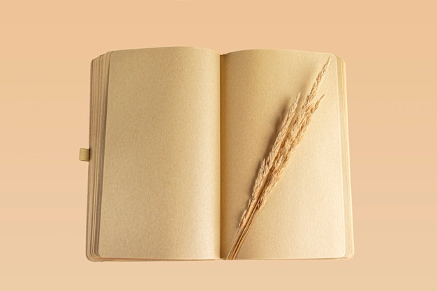 Diário aberto em branco (caderno, caderno) com grama de outono. conceito de escrever carta, desejos, metas, planos, história de vida. herbário de composição de outono. copie o espaço para o texto