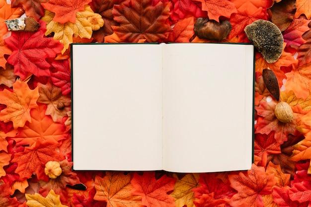Diário, ligado, outono sai
