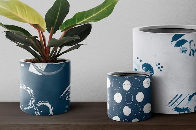 Dieffenbachia camille planta em um vaso azul