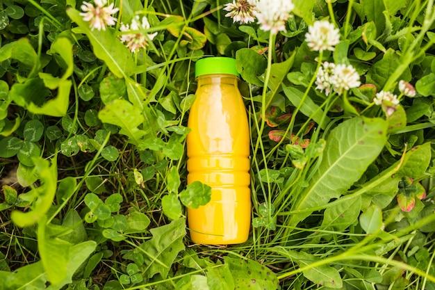 Dieta, desintoxicação e conceito de estilo de vida saudável. suco fresco em garrafa em uma grama verde