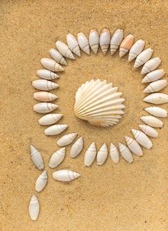 Diferentes conchas do mar e areia de coral