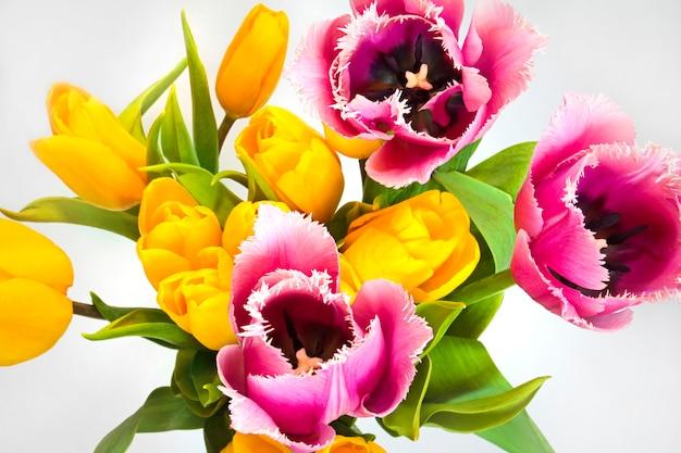 Diferentes formas e cores de flores