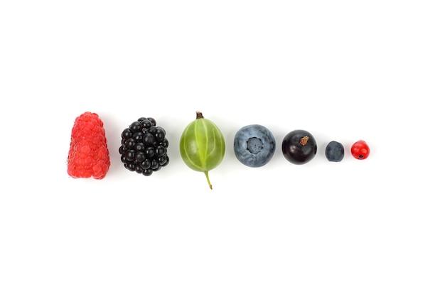 Diferentes frutas suculentas dispostas em uma fileira