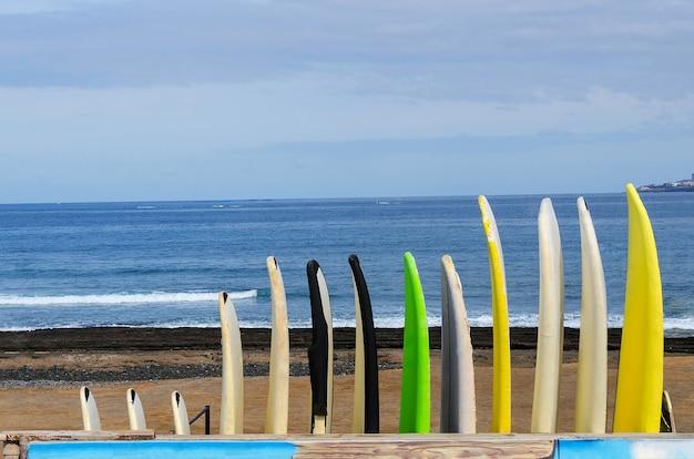 Diferentes surfbords e longbords atrás do oceano azul para desfrutar do surf. fundo de férias de verão ativo. copie o espaço.
