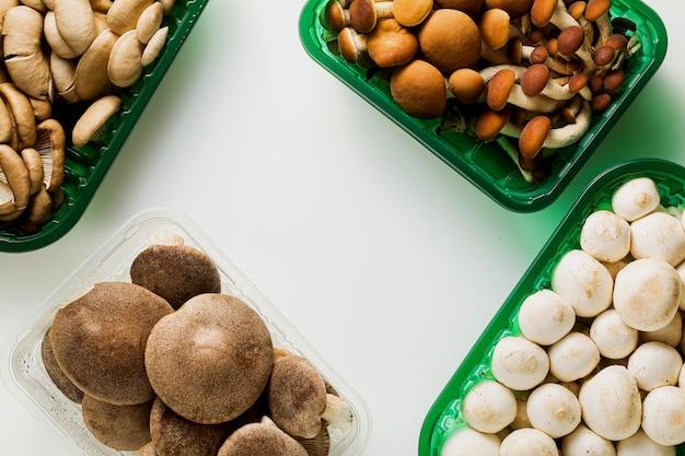 Diferentes tipos de cogumelos frescos em embalagens plásticas isoladas na mesa branca