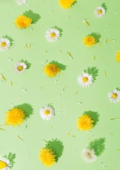 Diferentes tipos de flores dispostas em um padrão. flores amarelas e brancas sobre um fundo verde ... conceito do dia internacional da mulher. escamação mínima.