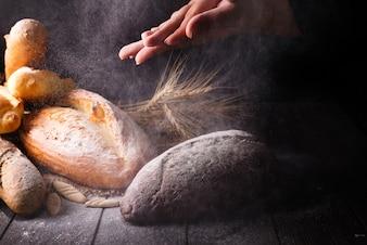 Diferentes tipos de pà £ o com cereais isolados