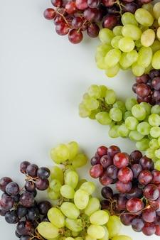 Diferentes uvas maduras em um branco.