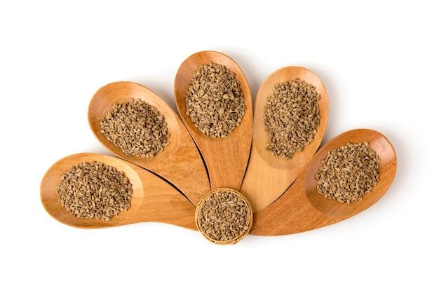 Dill secou sementes isoladas em background.top vista plana lay.