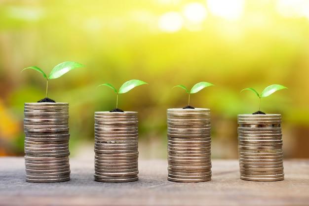 Dinheiro crescente, e, planta, ligado, moedas pilha, finanças, e, investimento, conceito, madeira, fundo