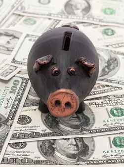 Dinheiro e cofrinho