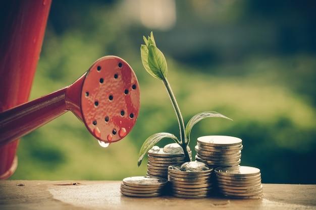 Dinheiro e planta com mão com efeito de filtro estilo vintage retrô