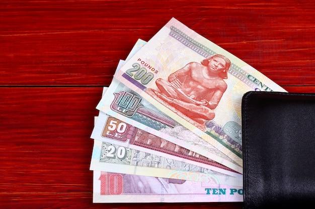 Dinheiro egípcio na carteira preta