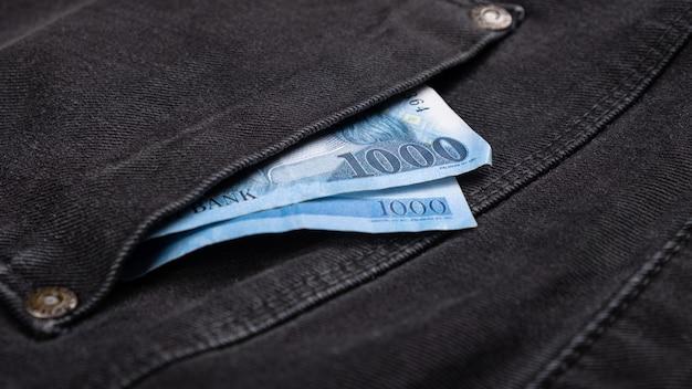 Dinheiro em economias de bolso, despesas financeiras.