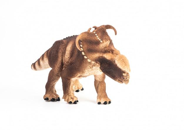 Dinossauro pachyrhinosaurus em fundo branco