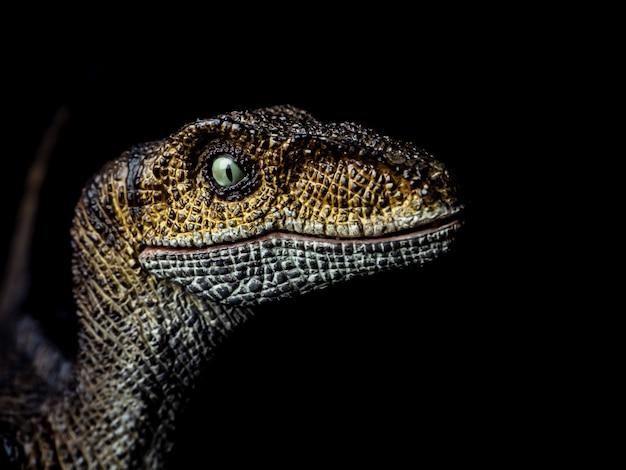 Dinossauro velociraptor em preto