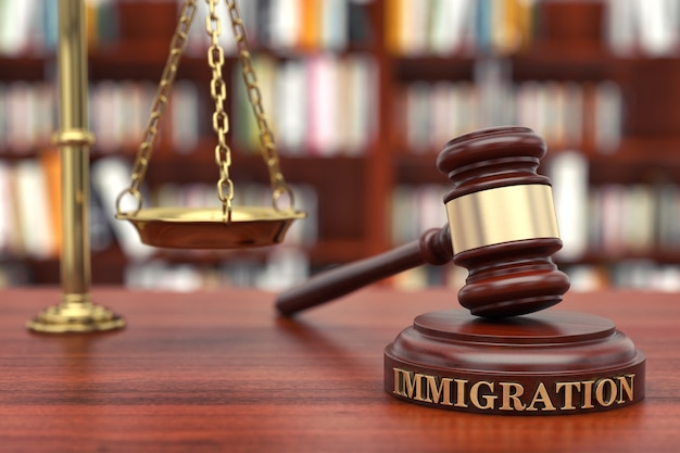 Direito de imigração