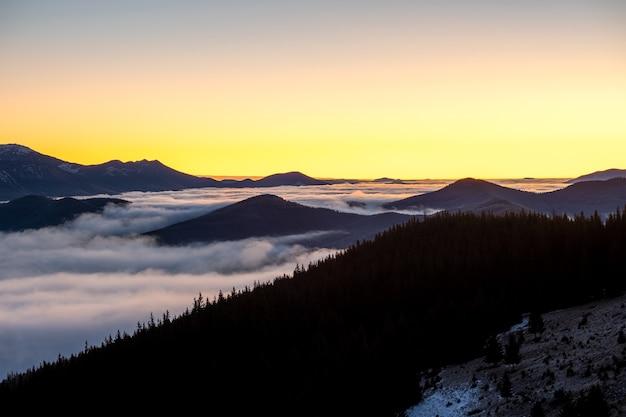 Distantes montanhas escuras cobertas por densa floresta de pinheiros, rodeadas por nuvens brancas nebulosas ao nascer do sol.