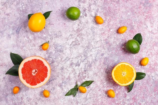 Diversas frutas cítricas frescas, limão, laranja, lima, toranja, kumquats.
